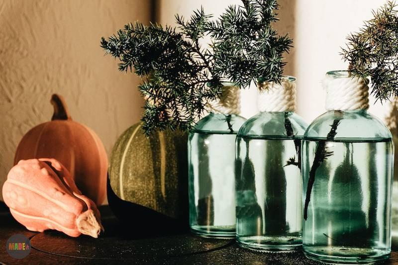 תמונת מדריך אגרטל בקבוק זכוכית